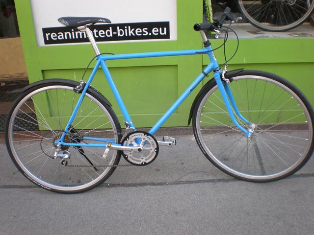 Dusika Wien Rad custom