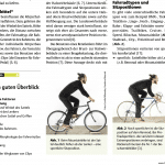 Back-on-Bike_Artikel-Sportphysio