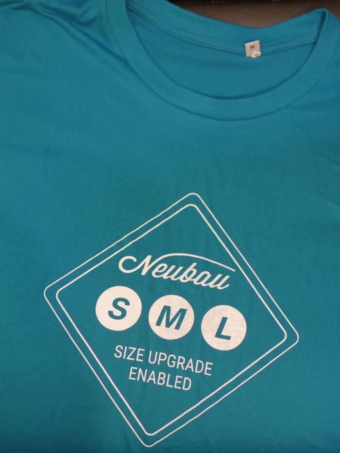 P1090040 e1543861361305 700x932 - T-shirts