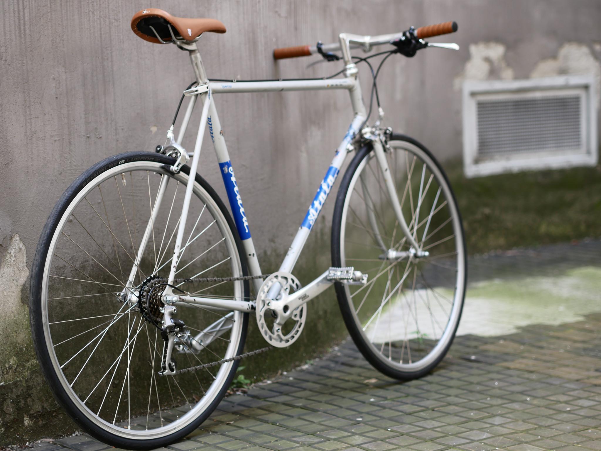 P1110676 - Atala Special